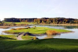 Inselgrün_auf_Golfplatz